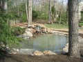 plotycia-pond-w1024-h768