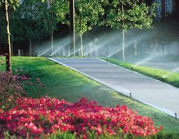 irrigation 1