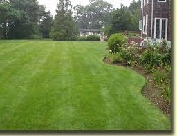 Lawn yard (2) (256x197)
